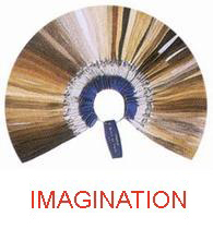 Wig Color Ring : Imagination