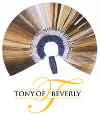 Wig Color Ring : Tony of Beverly (TB & TB Fashion)