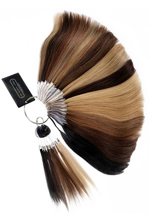 Wig Color Ring : Black Label Human Hair