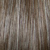 Eva Gabor Wig Color Smoked Walnut