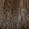 Eva Gabor Wig Color Pecan