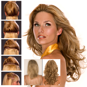 EasiXtend Clip-in Extensions : Elite 16 HH Set (#322)