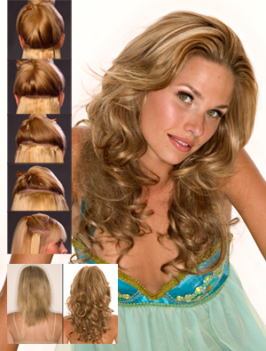 EasiXtend Clip-in Extensions : Professional 16 Set (#321)