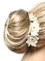 Elegance by Jon Renau EasiHair Formal Affair