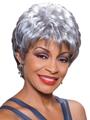 Diane by Foxy Silver Wigs Wigs